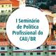 Seminario de politica profissional